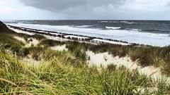Nach dem Sturm (Cydracor) Tags: dunes dune düne dünen odde norddorf noorsaarep oomram nf panasonictz71 lumixtz71 tz71 frisia northsea nordsee nordfriesland panasonic lumix storm sturm amrum cydracor