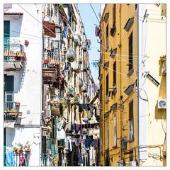 Naples / Napoli (drasphotography) Tags: napoli naples neapel italia italy italien street strase strada colourful buildings wäsche laundry travel travelphotography reise reisefotografie square squareformat rahmen frame drasphotography city urban