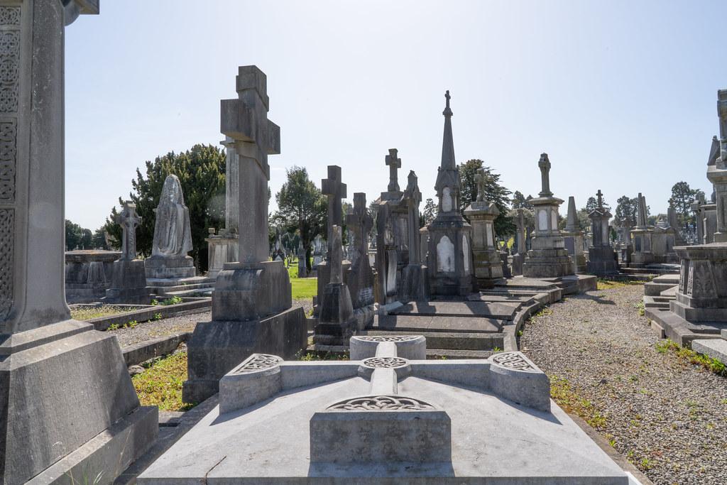 JOHN O'DONOVAN AN IRISH SCHOLAR [BURIED IN GLASNEVIN CEMETERY DECEMBER 13 1861]-138857