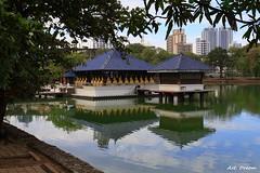 _01A4827 (Dream Delivered (Dreamer)) Tags: srilanka