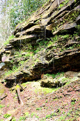 bigsouthfork_3825 (jcbonbon) Tags: april big south fork tennessee park spring waterfall