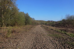 Old railway trackbed between Catcliffe and Treeton,  Sheffield  (former SDR route)   April 2018 (dave_attrill) Tags: catcliffe sheffield railway line disused trackbed remains goods sdr treeton ballast april 2018 sheffielddistrictrailway southyorkshire