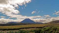 Taranaki volcans (jeanmarc.deconinck) Tags: new zealand aotearoa paysage landscape nature flore volcan taranaki