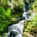 McLean Falls, NZ (Derek Midgley) Tags: d755085hdredit mclean falls nz new zealand waterfall