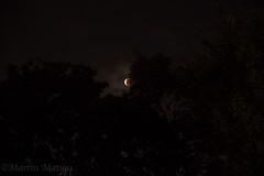 blood moon (Martin.Matyas) Tags:
