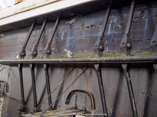 P8248473 HMS Warrior