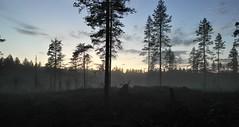 SAM_5026red (semcesen) Tags: mist värmland sweden sunset nordic tree treeline sky eerie wood höljes samsung samsungnx 20mm nx210
