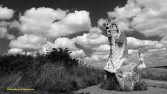 La Vallée des Saints en Bretagne (claude 22) Tags: valléedessaints bretagne breizh carnoet sculpture monumentale culture legends art granit tourism bw monochrome paysage landscape miliau statues noir blanc
