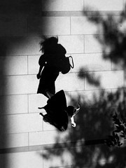 Shadow Dancer (明遊快) Tags: silhouette sunlight woman shadows trees urban street road japan blur candid