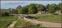 Common Sence (Blaydon52C) Tags: sence 66711 gbrf gbrailfreight railway rail railways railfreight trains train transport rylstone cracoe skipton yorkshire dales locomotive locomotives loco class66 6d73