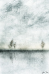 standing on the edge . . . (YvonneRaulston) Tags: tree trees sunset sundown clouds texture reflection simplistic atmospheric art abstract artistry creativeartphotography calm colour creative dream dusk desaturated digitalart digital emotive emotion fineartgrunge figures glow impressionist impact sky lake water moody moments mysterious sony photoshopartistry peaceful surreal soft together watercolour yvonneraulston