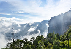 Pillar Rock (Bhaskar Dutta) Tags: kodaikanal tamil nadu india tourism clouds cloud rock hill tree nature station green blue