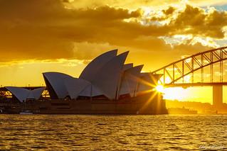 Goodnight Sydney