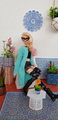 My Skipper (2010) collection (amartpas) Tags: barbie skipper fashionistas lagirl barbieintegrity ateliernishasha maggisatelier clearlan