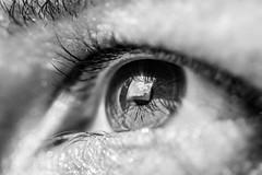 Love (Felipe F Barros) Tags: olho olhar alma profundo molduranatural moldura emoldurar reflexo reflexos refletir reflex canon canont5 canon100mm 100mm canonbr canonbrasi canon5d canon5dmarkiii markiii mark
