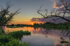 Silent sunday (piotrekfil) Tags: nature landscape sunset sun summer water river sky clouds trees reflections pentax poland piotrfil