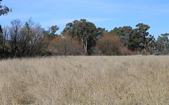 lot 163 Flacknell Creek Road, Gunning NSW