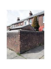 garden shed (chrisinplymouth) Tags: wall corner brick building architecture cornerpiece backlane house plymouth devon uk city cw69x wb xg england urban princerock