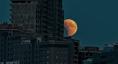 Blood Moon 2018 (free3yourmind) Tags: blood moon eclipse 2018 minsk belarus city rise