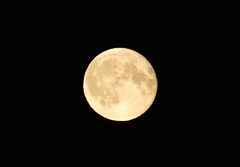 The moon is low tonight. (David JP64) Tags: moon stacksteads rossendale lancashire