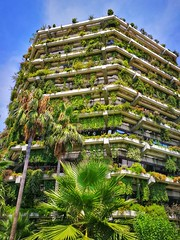 Wherever you want enjoy the nature...💚 (carlesbaeza) Tags: nature green barcelona building city catalonia architecture