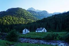Senda de Camille - Day 2 - Valles occidentales, Oza, Pyrénées, Spain (olivier.amiaud) Tags: vallesoccidentales oza pyrénées spain aragon sun forest forêt sendadecamille pirineos randonnée