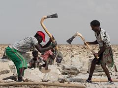 Salt (Magic Pea) Tags: photo photography magicpea ethiopia travel africa eastafrica afar salt workers danakil