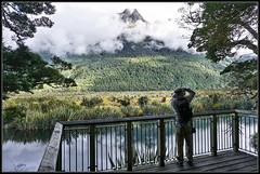 Photographer @ the Mirror Lake (J-o-h-n---E) Tags: nz newzealand newzealandsouthisland teanau mirrorlakes peak lake viewingpoint photographer clouds trees
