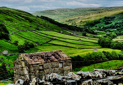 Upper Swaledale (tina negus) Tags: thwaite view upper swaledale yorkshire dales meadows