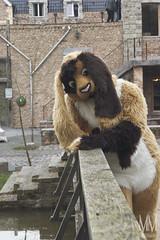 _DSC0060 (MM Furry Photo) Tags: bunny rabbit fursuit fursuiting portrait critterfactory pantoffel