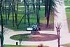 IMG_0430 (Mike Pechyonkin) Tags: 2018 moscow москва tree дерево flower цветок lenin ленин monument памятник boulevard бульвар path дорожка grass газон
