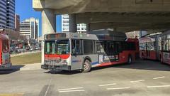 WMATA Metrobus 2005 New Flyer DE40LF #6029 (MW Transit Photos) Tags: wmata new flyer de40lf