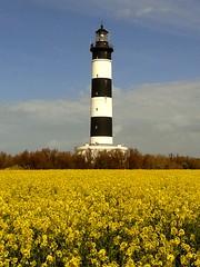 Ile d'Oléron Charente Maritime (val.merkel) Tags: phare oléron chassiron lighthouse