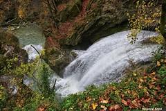 Cascada en el Urederra. (Howard P. Kepa) Tags: navarra baquedano riourederra nacimientodelurederra parquenaturalsierraurbasaandia cascada agua rocas otoño hojassecas vegetacion