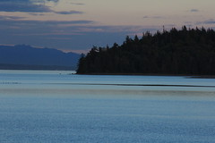 IMG_9711 (ultomatt) Tags: sun spectacular sky sunset gooseberry point puget sea lummi portage portagebay portageisland ocean