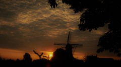 The mill and the sun...26-7-2018 (wilma HW61) Tags: sunrise zonsopkomst alba solopgang leverdusoleil silhouet molen mill molino múhle moulin framing hattem gelderland veluwe defortuin historisch historic historical historique nederland niederlande netherlands nikond90 natuur natur nature clouds sky wolken wolkenlucht holland holanda paysbas paesibassi paísesbajos europa europe été zomer summer sommer wow