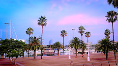 Sky turning pink (Fnikos) Tags: port puerto porto harbour harbor sea mar mare water waterfront sky cloud sunset boat sailboat reflection people nature tree palmtree city building tower architecture outdoor