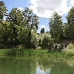 Jardin Botanique Jean-Marie Pelt - Le secteur écologique thumbnail