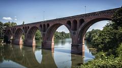 Le Pont-Neuf d'Albi - Brug Albi (schreudermja) Tags: nikond800e france frankrijk nikon martyschreuder albi tarn rivier rivière river bridge old lepontneufdalbi pontdu22aout1944 22081944 napoleon pontnapoléon pontdestrasbourg pont 1867 outdoor pontneuf water viaduct