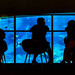 People at Sumida Aquarium in Tokyo Sky Tree Town : (東京スカイツリータウン・すみだ水族館)