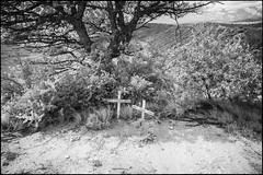 Rhino Grave Site (zenseas) Tags: africa amakhalagamereserve gravesite wild workingholiday infrared workingvacation bushmansriver easterncape whiterhinoceros whiterhino southafrica vacation grave holiday ceratotheriumsimum poached ir monochrome bw blackandwhite river memorial