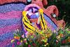 p7431_Errel2000_Praalwagen (Errel 2000 Fotografie) Tags: praalwagens noordwijkerhout roblangerak errel2000 bloemen flowers corso bloemencorso bollenstreek bloembollenstreek kleurrijk