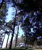 Longer pause.! (Mike-Lee) Tags: derwentmoors campervan jillmikepeakdistrict april2018 peakdistrict debeyshire derwentwater woods trees lake mike jill van camper renault phonepics