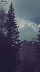 Mountain darkness (wichrzu_wichrzu) Tags: mountains tatry zakopane trip spring travel