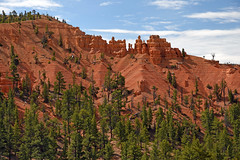 Red Canyon - Utah (Jeffrey Neihart) Tags: jeffreyneihart nikon nikon1680284 nikond7200 utah redcanyon dixienationalforest dixie national forest sandstone hoodoo pinetrees pines pine