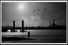 Fisherman. (agphoto100) Tags: brisbane river wet water shine dark light fuji f770exr refinery factory industrial metal peir piles reflection fishing birds flying formation ramp boat concrete stones mono bw