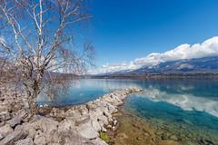 Charpignat, le Bourget du Lac - Savoie (Avril 2018) (gerardcarron) Tags: arbre 1022 canon80d ciel cloud eau hiver lac lacbourget lake landscape nature nuages nuage paysage printemps savoie sky water