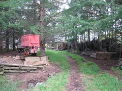Decisions, Decisions. (Tramway Goats) Tags: setup ramp siding comparison endramp trees orecar