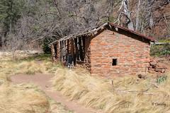 Tumble Down Shack in Oak Creek Canyon (Sedona, Arizona) (Jersey Camera) Tags: arizona roadscholar roadscholartrip shack desertedbuilding oakcreekcanyon sedonaarizona sedona