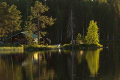 small fishermans island 2 (VisitLakeland) Tags: finland lakeland summer auringonlasku ilta island järvi kesä kota lake luonto maisema nature nuottakota outdoor outdoors saari water